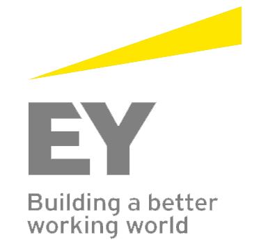 Ernst-young copie