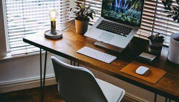pot-plants-desk